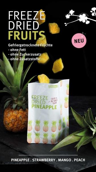 freeze_dried_pineapple